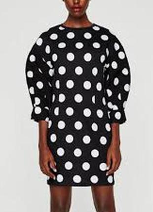 Крутое мини платье в крупный горох от zara - на хс, с - стоячие рукава