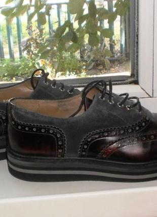 Кожаные классические туфли оксфорды baldinini италия