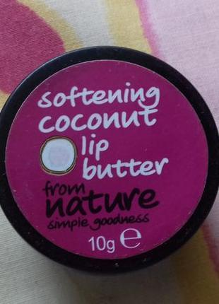 Зимний увлажняющий нелипкий приятный бальзам для губ с кокосом next некст