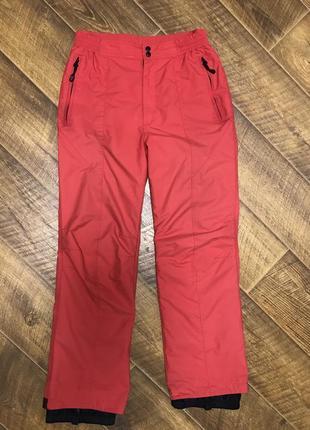Мужские лыжные штаны брюки power zone l