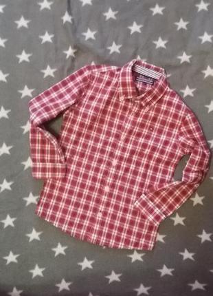 Мега стильна сорочка tommy hilfiger