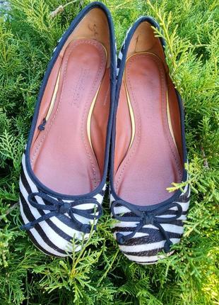 Туфли из натуральной кожы зебры
