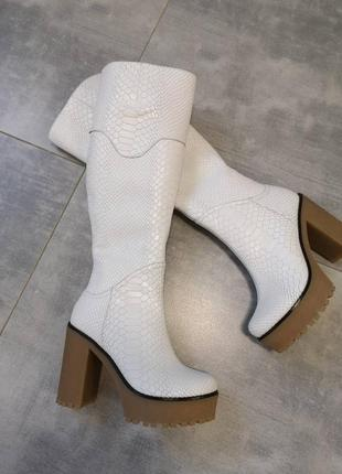 Кожаные сапоги на каблуке  осень-зима(118),р-ры 36-40,любой цвет!