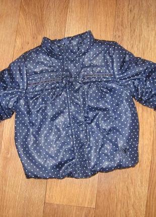 Курточка демосезонна  на дитину фірма chicco