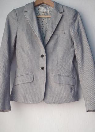 Пиджак, жакет в полосочку от h&m, размер xs
