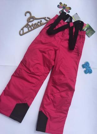 Штаны лыжные crane 134-140