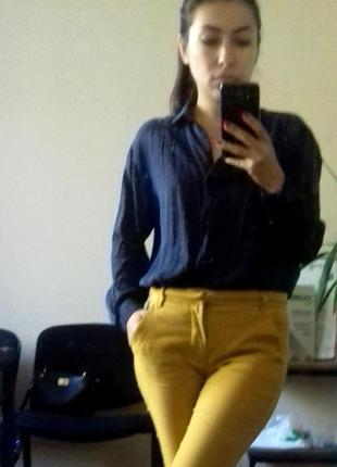 Блузка, рубашка, блуза zara