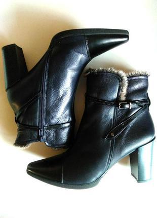 🍁 кожаные полусапожки, ботинки на устойчивом каблуке hispanitas, испания