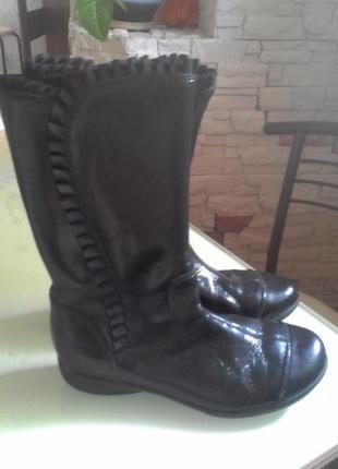 Чобітки осінні clarks шкіра+туфлі в подарунок