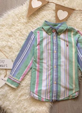 Яркая рубашка в полоску на 2-3 года