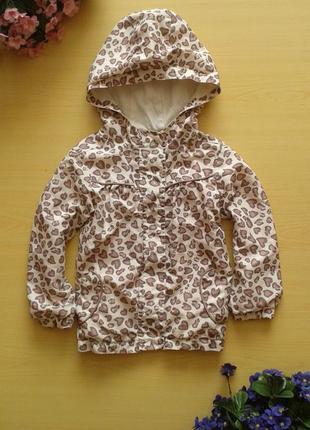 Ветровка-куртка f&f, хлопковая подкладка, 2-3 года 98 см