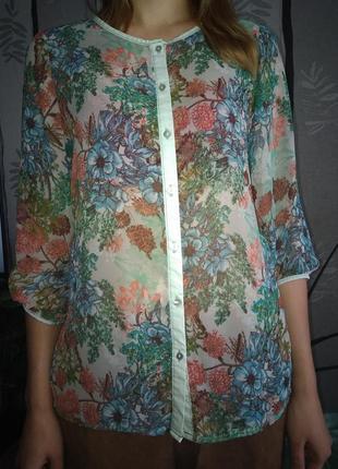 Ніжна блуза glo-story