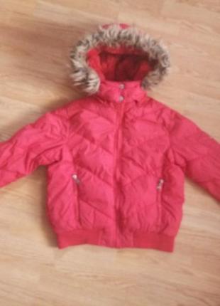 Зимняя куртка короткая с капюшоном