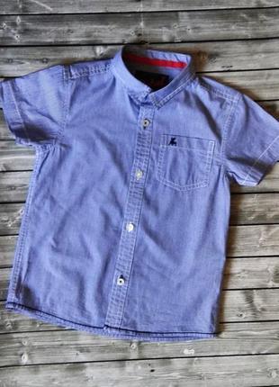 Рубашка в мелкую полоску, 110см, состояние идеальное