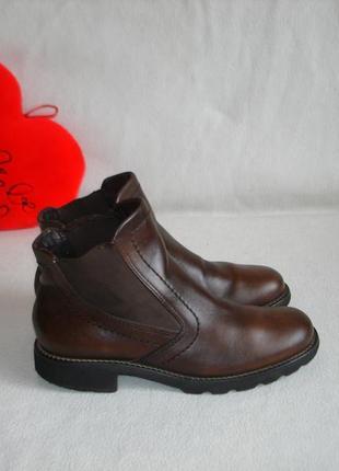 Ботинки ботильоны кожаные бренд ecco