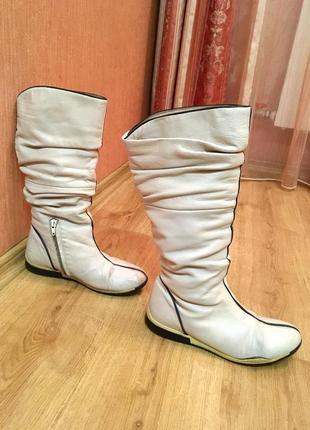 Зимние сапоги, еврозима, ботинки