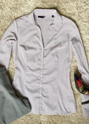 Классическая рубашка tru trussardi