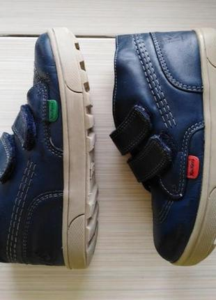 Кикерс kickers ботинки туфли кожа демисезон