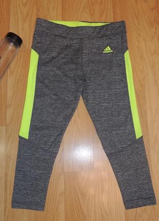 Яркие бриджи /лосины adidas