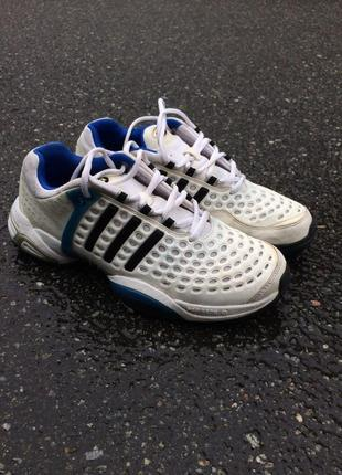 Adidas climacool limited edition