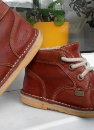 Ботинки kickers