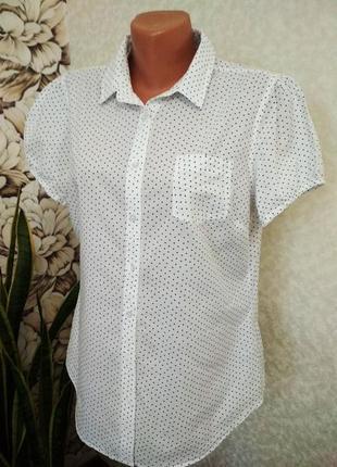 Блуза в горошек, хлопок. 1+1= 50% скидки на 3ю вещь.