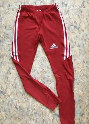 Спортивные штаны лосины adidas original xs-s!