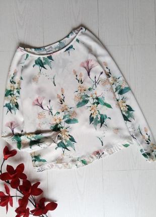 Блуза zebra