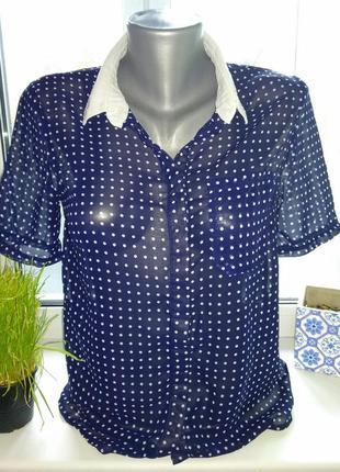 Рубашка в горошек atmosphere