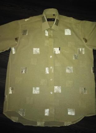 Красивейшая рубашка shengwel.