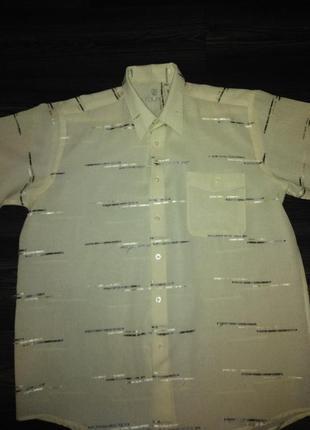 Рубашка  rolayt