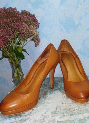 Кожание туфли на каблуке туфлі