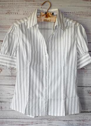 Блуза коттоновая в полоску