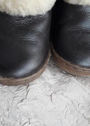 Кожаные зимние сапожки ботиночки zara 21 р.овчина3