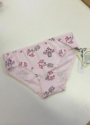 Новые розовые трусики с совами для девочки, ovs kids, 24385242