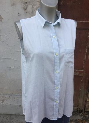 Рубашка без рукавов голубая gap