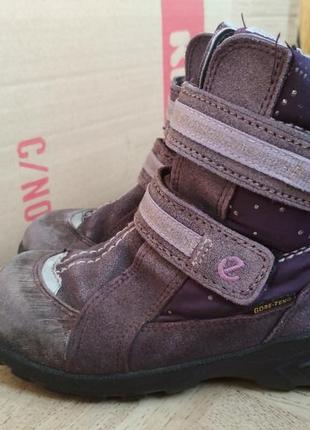 Зимние ботинки ecco gore-tex. размер 27.4