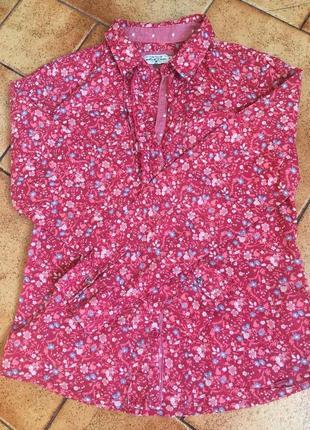 Рубашка tom tailor (m)