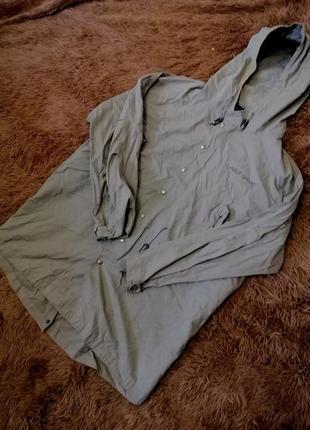 Мужская куртка polo sport
