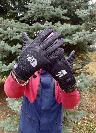 Перчатки зимние мужские спортивные the north face (сенсорные)