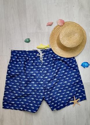 Мужские шорты для плавания с акулами