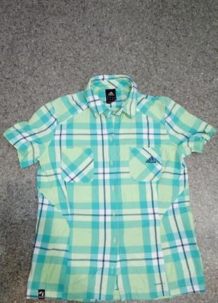 Рубашка в клетку adidas