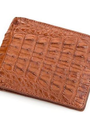 Кошелек crocodile leather 18164 из натуральной кожи крокодила коричневый