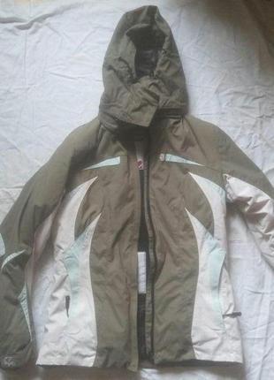 Брендовая спортивная куртка на осень и зиму ветровка