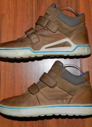 Ecco! оригинальные, кожаные, невероятно крутые ботинки3