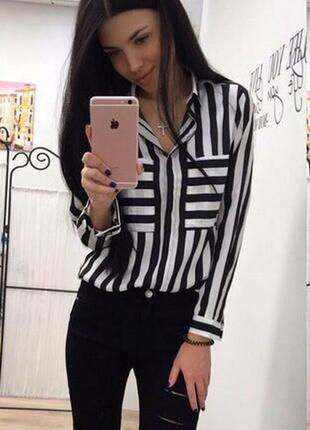 Рубашка /блуза в полоску