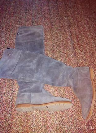 Серые замшевые сапоги ботфорты