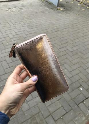 Бронзовий гаманець