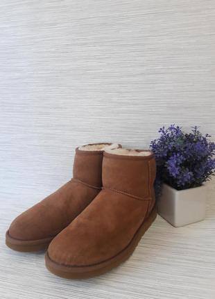 Оригинальные женские ботинки ugg