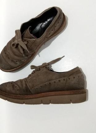 Крутые замшевые туфли на платформе   с перфорацией